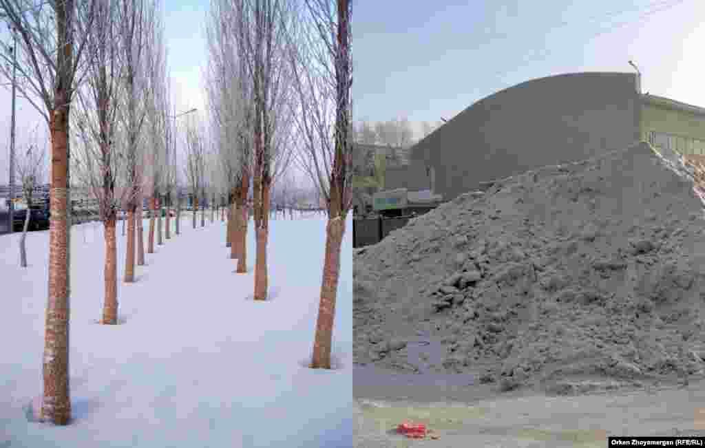 Ухоженные деревья и неубранный снег.