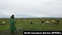 Дагестан. Иллюстративное фото
