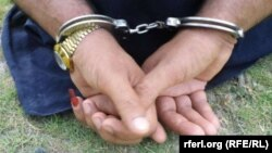 ۳۵ تن به اتهام جرایم مختلف در هرات بازداشت شدند