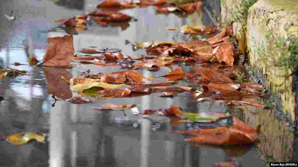 Потоки воды уносят листья к ливневой канализации