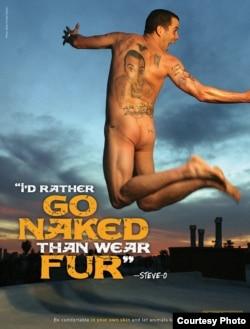 Популярный американский комик Steve-O в кампании против использования натурального меха