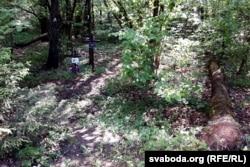 Нехта ставіў крыжы проста ў лесе