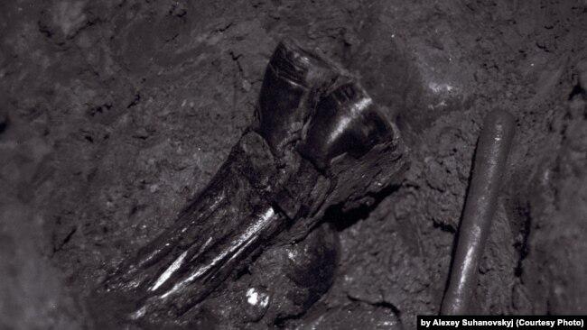 Вместе с останками в 1989 году были найдены личные вещи убитых