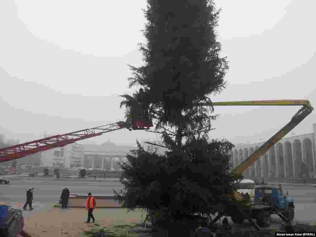 Самая главная елка страны
