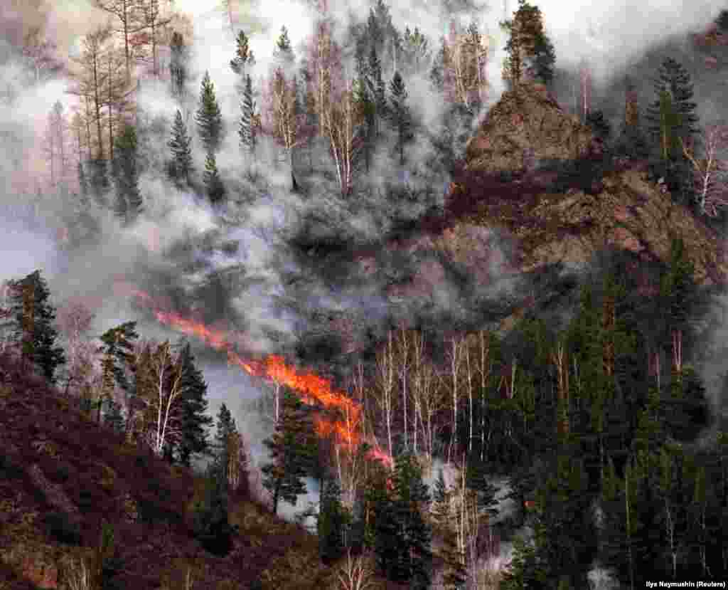 A 2002 file photo of a Siberian wildfire. According to a recent scientific study, the forests of Siberia are being changed fundamentally by regular fires.