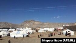 شماری از باشنده های ولایات بادغیس، غور و فاریاب که در اثر خشکسالی به هرات بیجا شدهاند. 25 Dec 2018