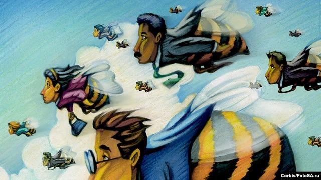 У пчел повседневная командная работа устроена куда сложнее, чем у человека разумного. Стоит ли в связи с этим считать их существами более образованными?