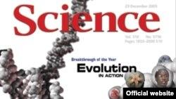 Журнал Science подводит итоги научного года; декабрь 2005