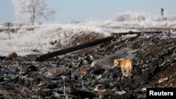 MH17 учқичи қулаб тушган жой.