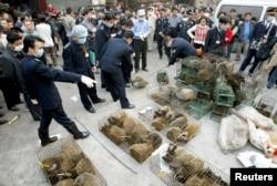 Цивет убирают с рынка в городе Гуанчжоу. Это 2004 год, самый конец эпидемии SARS.