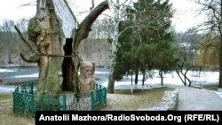Під цим 700-літнім дубом Григорій Сковорода ховався від спеки. Через недбалість працівників дуб засох