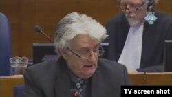 Radovan Karadžić u sudnici 2. veljače 2012.