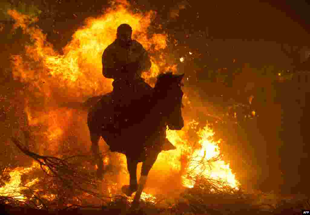 A horseman jumps over a bonfire in the central Spanish village of San Bartolome de Pinares to open the celebrations for the feast of St. Anthony, patron saint of animals. (AFP/Pierre-Philippe Marcou)