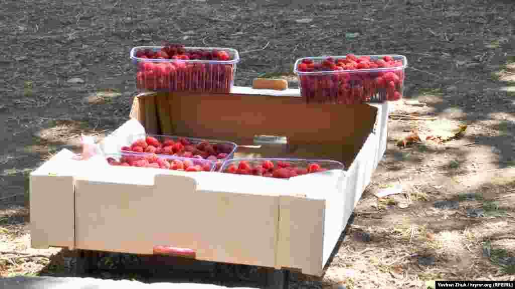 Місцеві жителі продають домашню малину прямо із землі