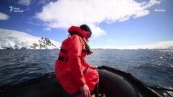 Антарктика залишилася останнім континентом без коронавірусу – відео