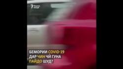 Панҷ чизи донистанӣ дар бораи пайдоиши CОVID-19