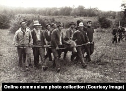Мужчины несут тушу медведя из леса, чтобы показать ее приехавшему на охоту Чаушеску. 1972 год.