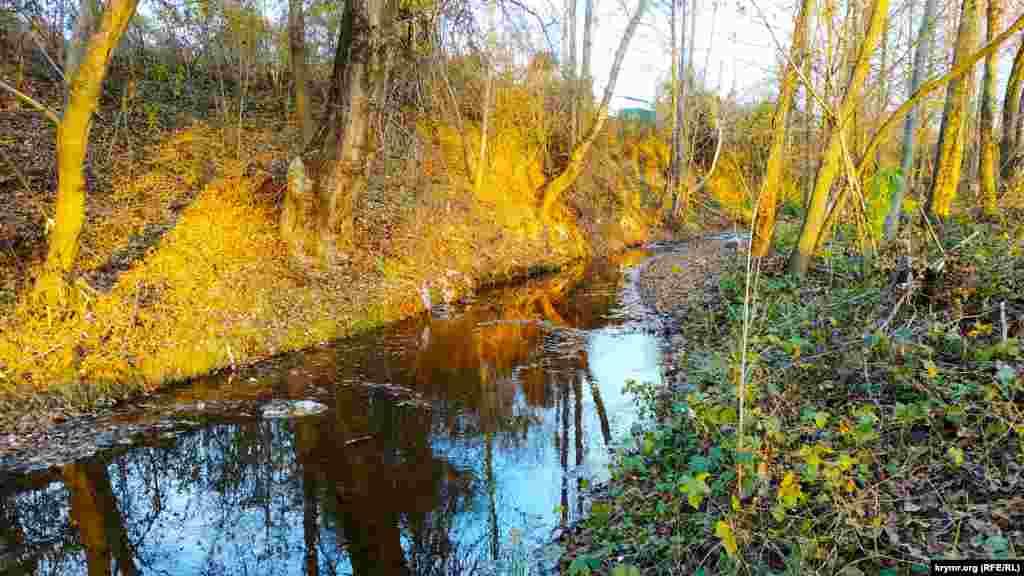 Річка Бельбек, що тече неподалік водосховища, також обміліла