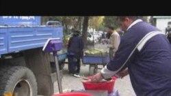 Вазъи моҳипарварӣ дар Тоҷикистон