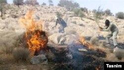 آتشسوزی در کوه حاتم