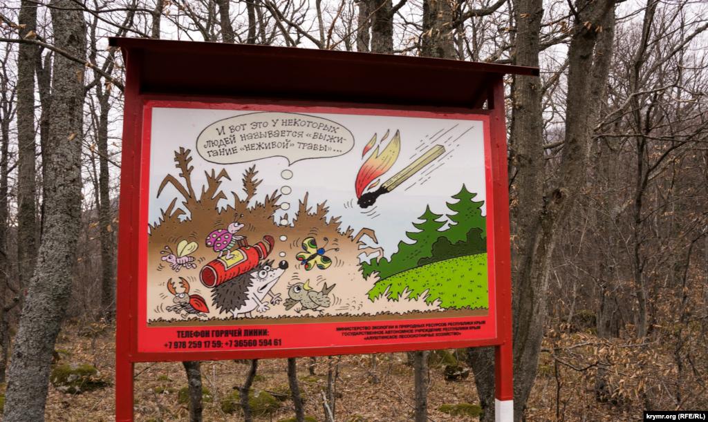 Місцями зустрічається протипожежний «креатив» алуштинських лісників
