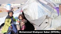 وضعیت آوارهها در ولایت هرات