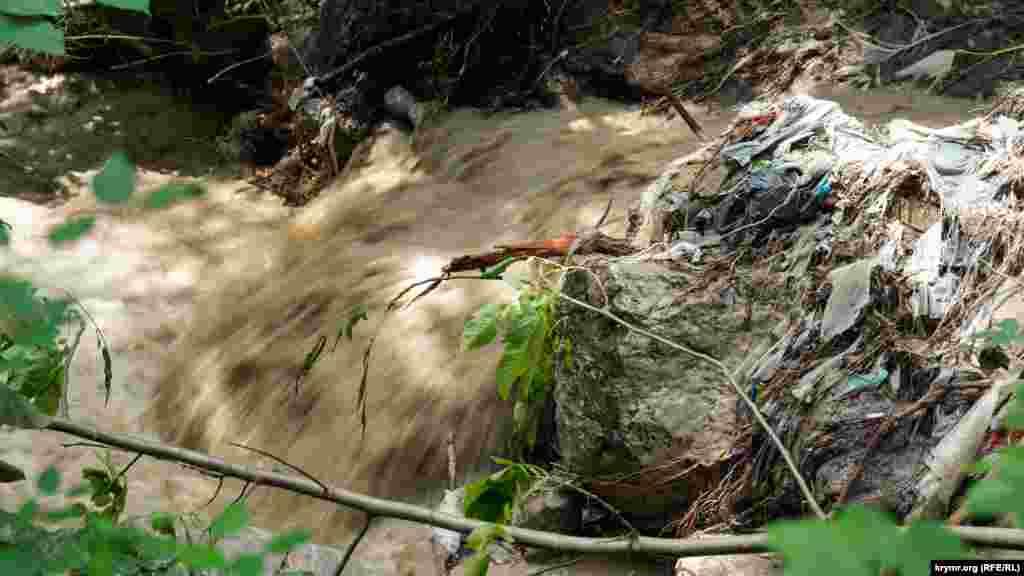 Вода старим річищем мчить до моря