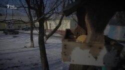 Добратися в Кримське – село на лінії розмежування – не просто