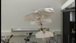 Öz-özünə idarə olunan uçan aparat yaradıldı