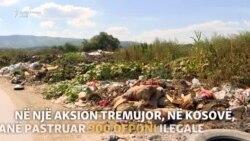 Sa janë aktivë të rinjtë kosovarë në ruajtjen e mjedisit?