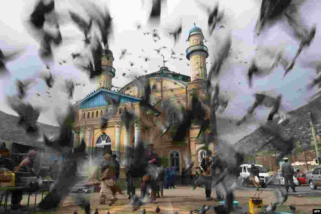 Pigeons disperse at the Shahi Doshamshira Mosque in Kabul on March 20. (AFP/Shah Marai)