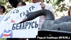 Пікет каля пасольства Беларусі ў Кіеве, 23 ліпеня