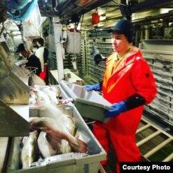 Работы на рыболовецком судне