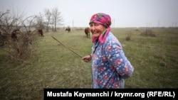 Женщина пасет скот недалеко от Феодосии, Крым, 8 марта 2016 года. Иллюстрационное фото