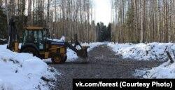 Пуловский лес и вырубленные в нем межквартальные проезды