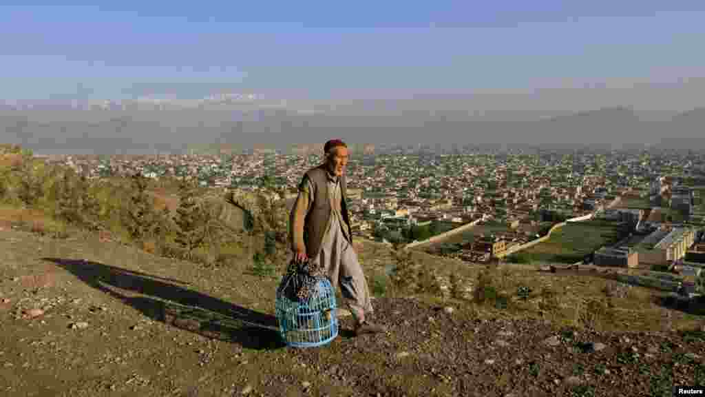 An Afghan man walks with a cage of quails on a hill over Kabul. (Reuters/Mohammad Ismail)