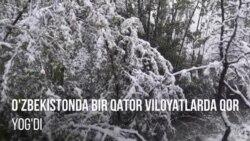 В ряде областей Узбекистана выпал апрельский снег