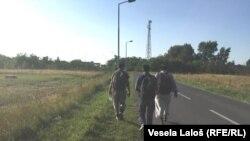 Izbjeglice na granici između Srbije i Mađarske