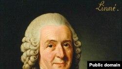 Заслуги Карла Линнея были высоко оценены королем Швеции. Ученый был удостоен графского титула.