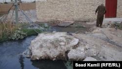 مجار طافحة في احدى مناطق بغداد