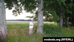 Ліпавыя прысады — адзінае, што нагадвае ў Басіне пра панскі маёнтак