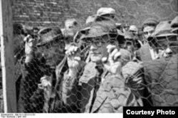 Арестованные сербские евреи. Белград, 1941 год