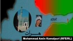 هرات: در سالجاری شماری از کارمندان تحت پیگرد قرار گرفتهاند