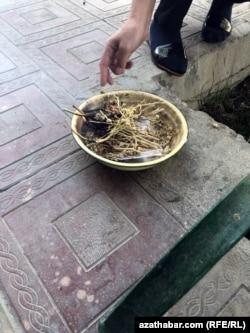 В Ашхабаде снова активизировалось окуривание гармалой-могильником, Июль, 2020