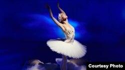 Голландиянын улуттук балет театрынын атактуу бийчиси Мая Махатели.