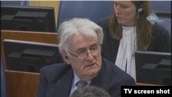 Radovan Karadžić u sudnici 30. studenoga 2012.