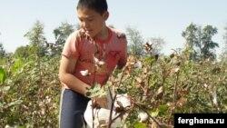 Мальчик с мешком хлопка на поле. Узбекистан, сентябрь 2010 года.