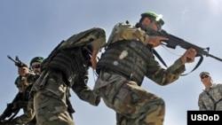 يک فرمانده مرزبانی افغانستان به خبرنگاران افغان و غربی گفته است که شماری از شبه نظاميان با عبور از خط مرزی، از ايران وارد خاک افغانستان شده اند.