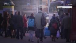 Збирач ягід, працівник м'ясокомбінату та «айтішник» – як працюється українцям у Польщі (відео)