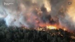 Požari u Australiji – katastrofa ili opomena?